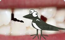 knkket-tand